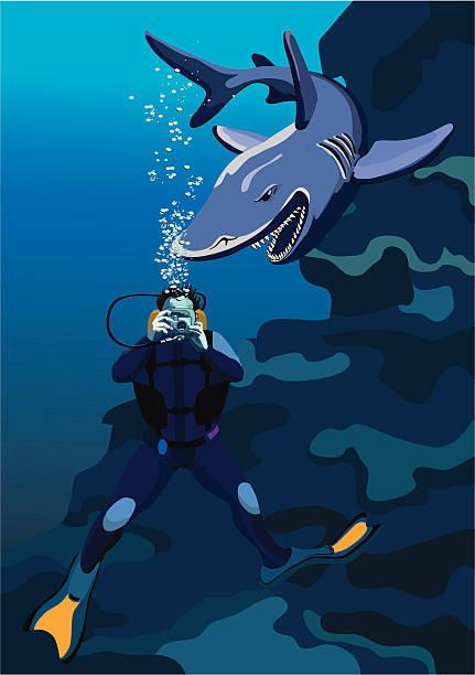 illustrazioni stock, clip art, cartoni animati e icone di tendenza di frogman e squalo - frogman