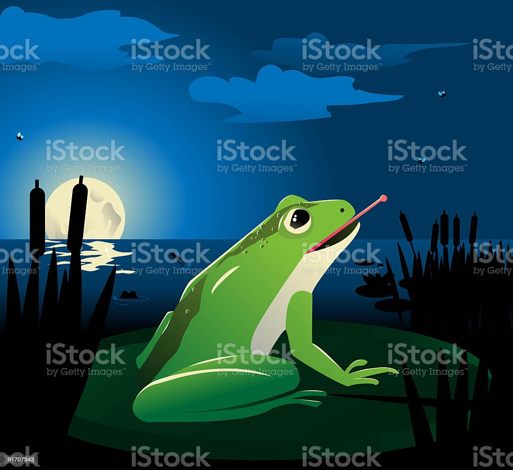 Frogs at a lilly pond vector art illustration