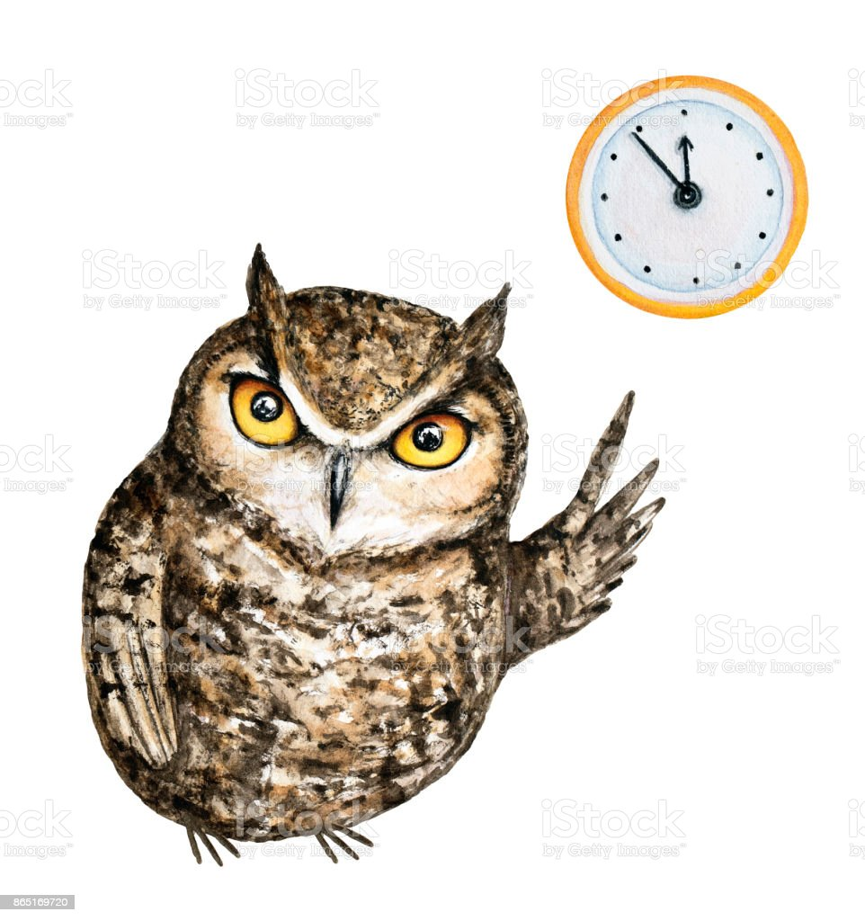 Frown brown great horned owl with orange eyes points with a wing to a classic round wall yellow clock. Five minutes to twelve o'clock. vector art illustration