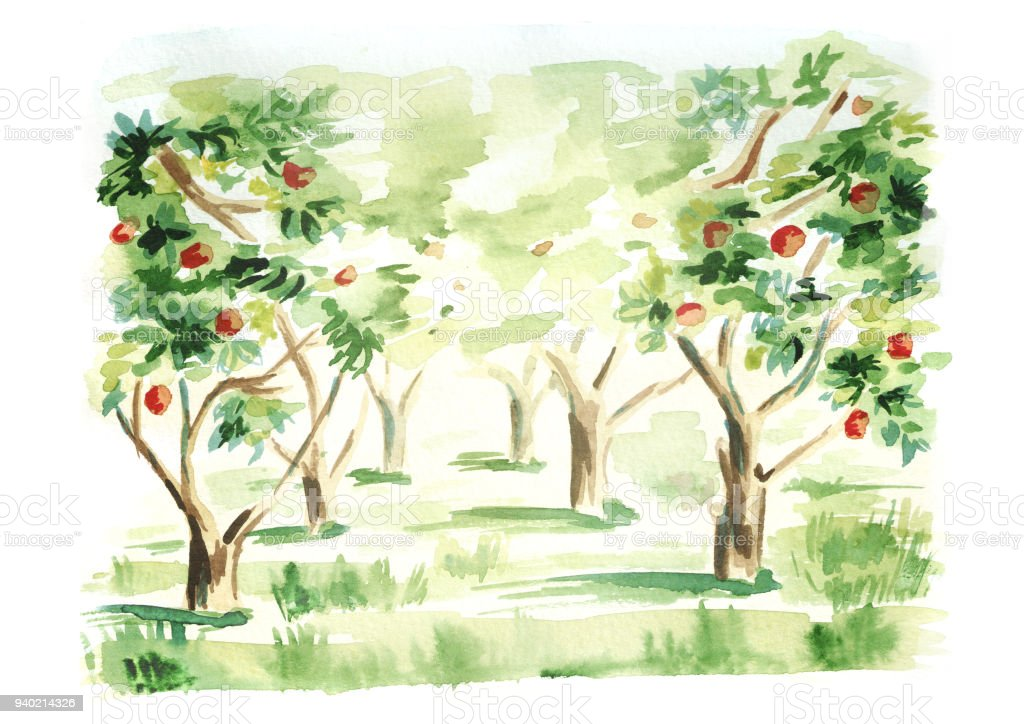 Fruit Garden Landscape Hand Drawn Watercolor Template And Background ...