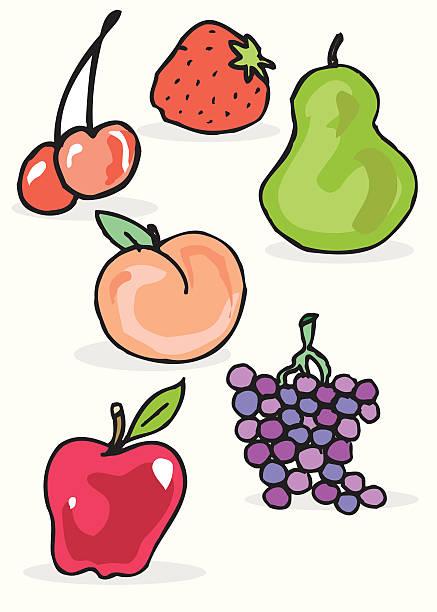 Fruit vektorkonstillustration