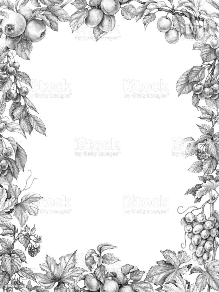 Fruit Vertical Frame Pencil Drawing Stock Illustration   Download ...