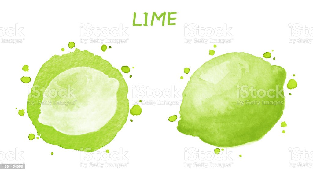 Fruits and berries set - lime. Watercolor illustration vector art illustration