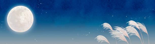 illustrazioni stock, clip art, cartoni animati e icone di tendenza di full moon viewing - miscanthus sinensis
