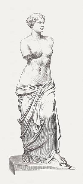Full size drawing or sketch of the Venus de Milo statue vector art illustration