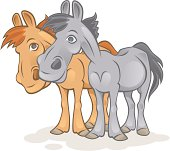 Funny horses on a white background