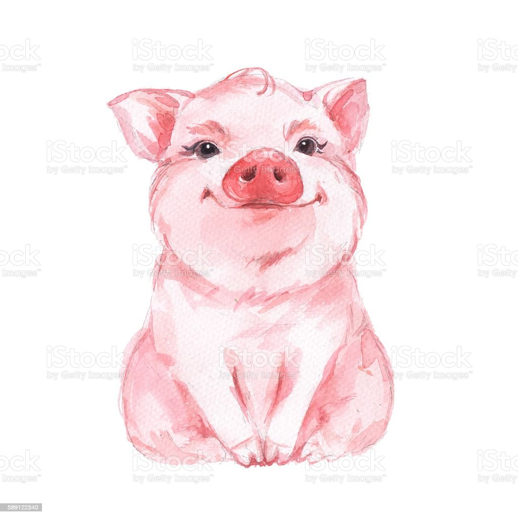 Funny pig. Cute watercolor illustration 1 vector art illustration
