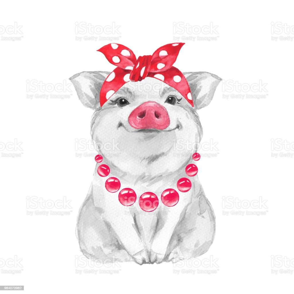Funny Pig Wearing Bandana Isolated On White Stock Vector ...
