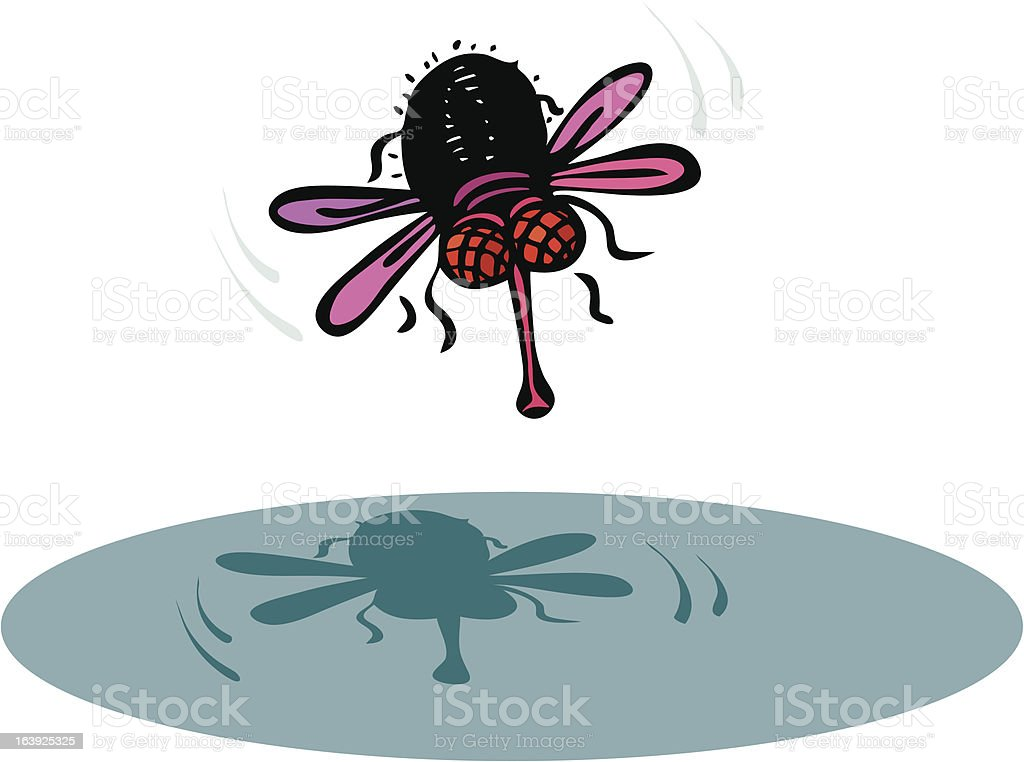 Funny red eyed fly royalty-free funny red eyed fly stock vector art & more images of animal