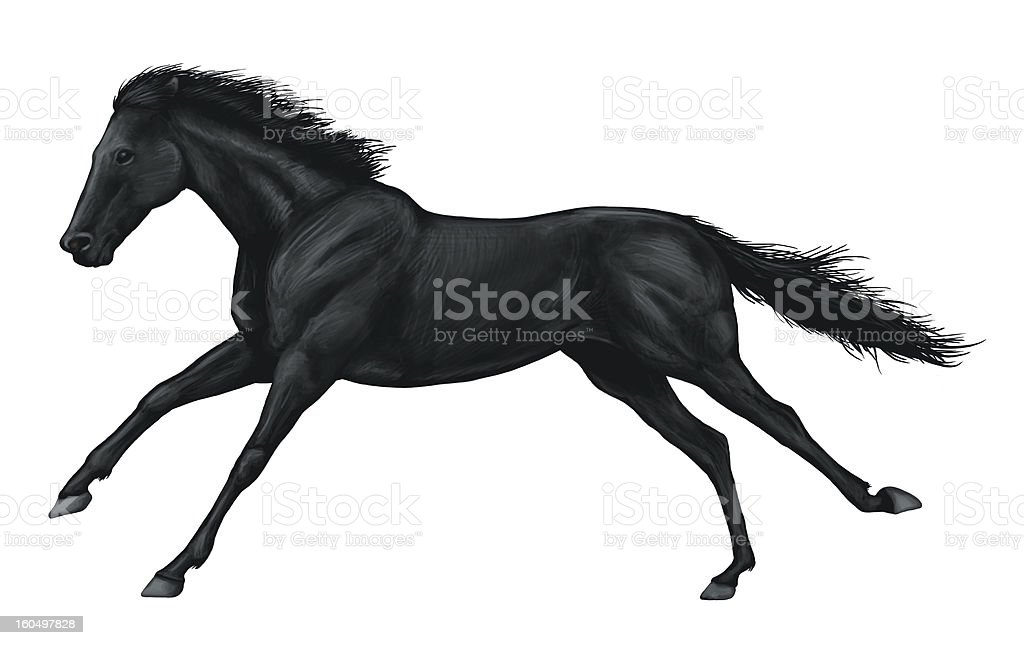 galloping horse vector art illustration
