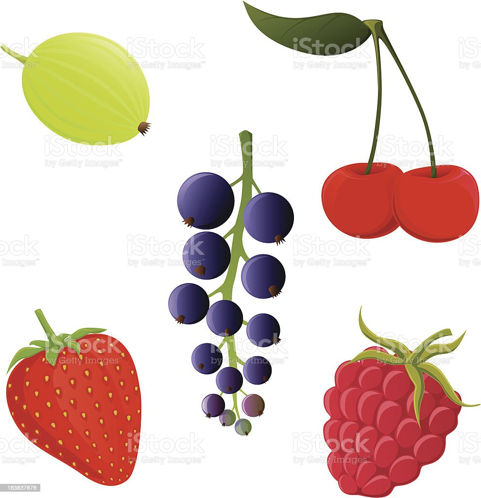 garden berries royalty-free stock vector art