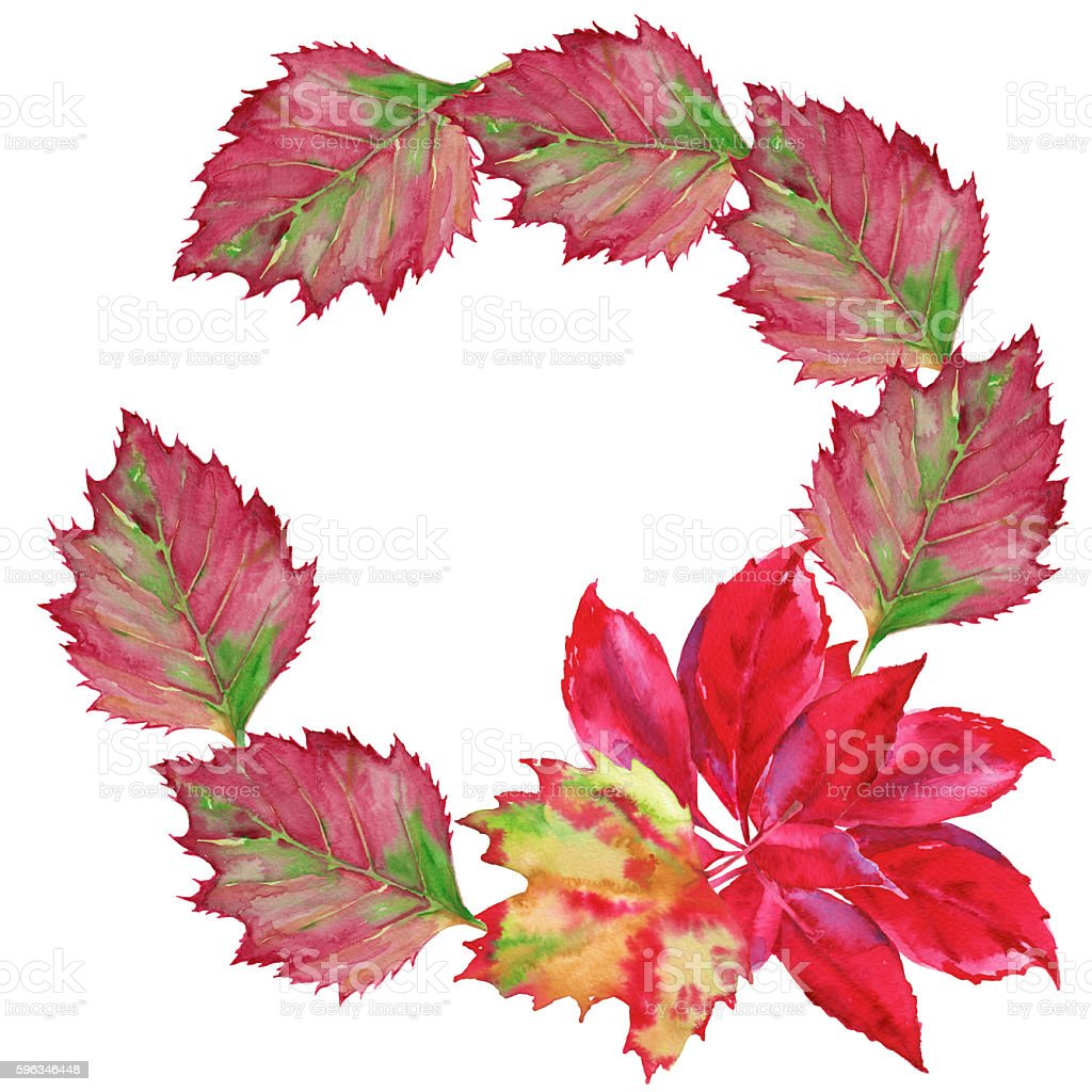 garland of a fallen leaf. Isolated on a white background. royalty-free garland of a fallen leaf isolated on a white background stock vector art & more images of art