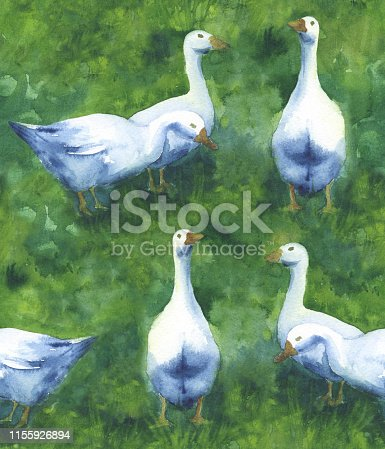 Seamless pattern with geese on green meadow
