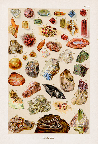 F. Martin`s Naturgeschichte. Große Ausgabe. Neu bearbeitet von M. Kohler, 1899