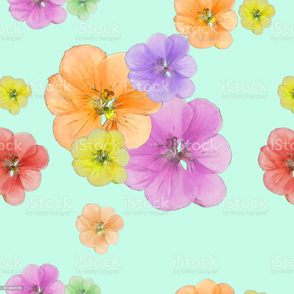 Geranium, cranesbill, pelargonium. Seamless pattern texture of flowers. Floral background, photo collage vector art illustration
