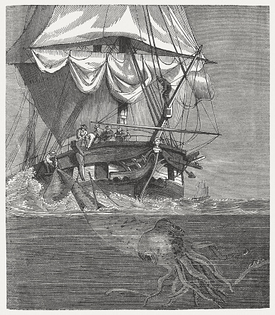 Giant Squid (Architeuthis dux), published in 1868