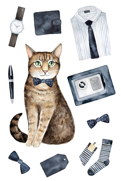 Gift tag design, print, special poster, greeting card template with brown cat, mans things, wear, outfit and accesories. vector art illustration