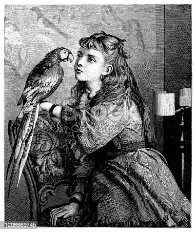 Illustration of a Girl with parrot