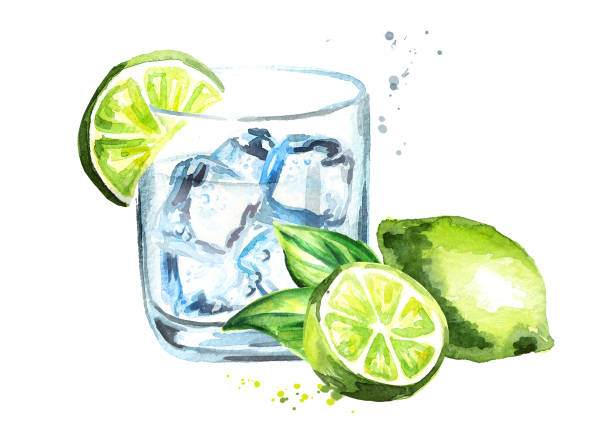 illustrazioni stock, clip art, cartoni animati e icone di tendenza di glass of gin tonic with ice cubes and lime. watercolor hand drawn illustration, isolated on white background - aperitivo