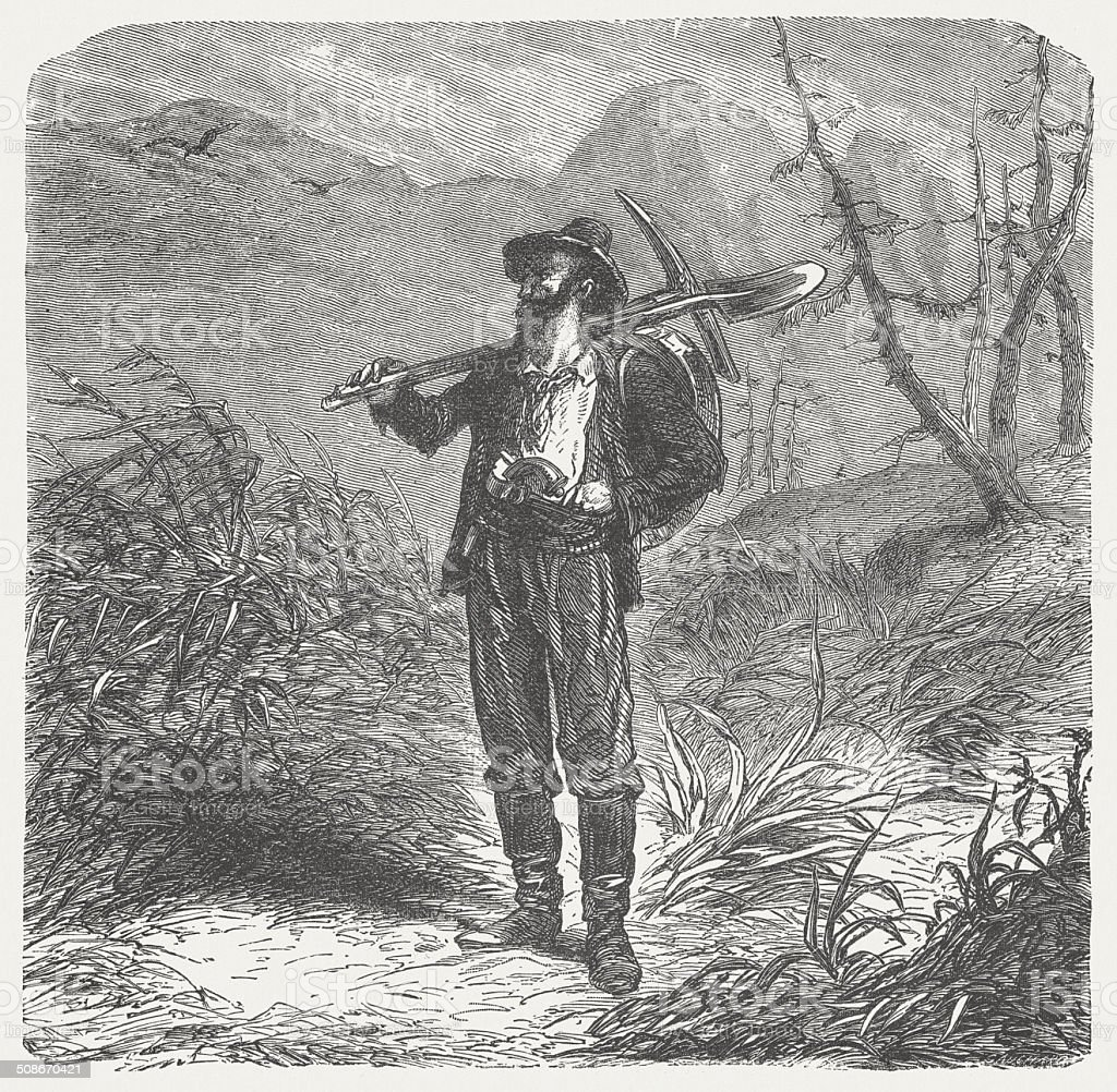 Gold digger in the 19th century, wood engraving, published 1877 vector art illustration