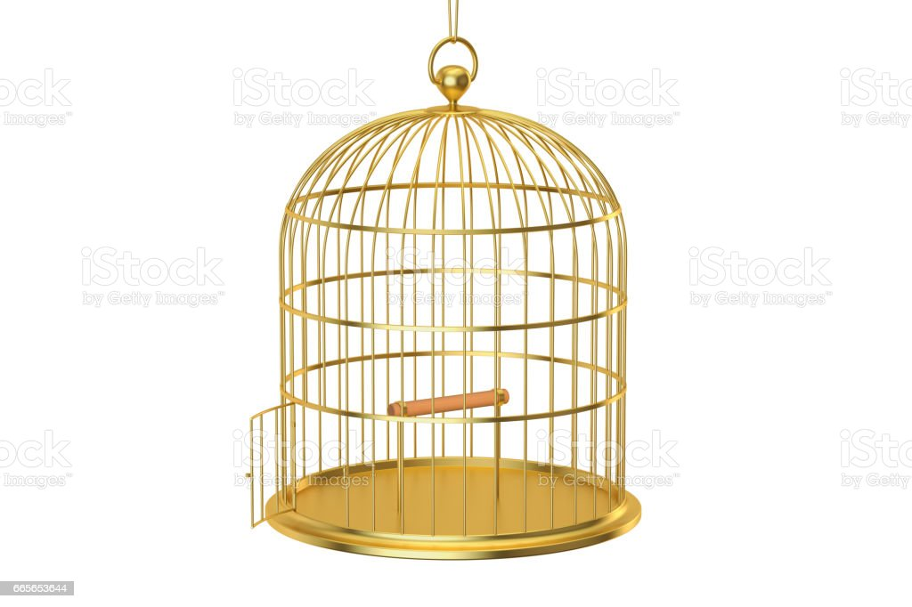 Golden bird cage with open door, 3D rendering isolated on white background vector art illustration