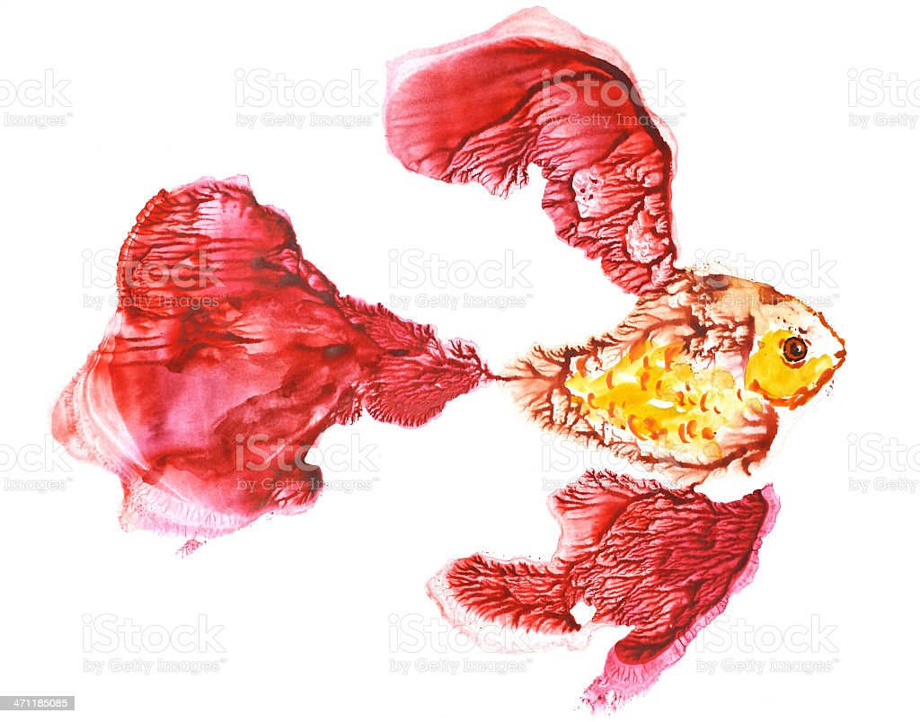 Golden fish royalty-free golden fish stock vector art & more images of abstract
