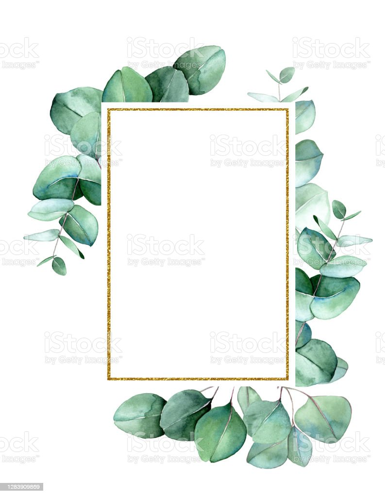 Golden Rectangular Frame With Green Eucalyptus Leaves Watercolor Drawing  Clipart Design For Wedding Postcards Congratulations Invitations Perfume  And ...
