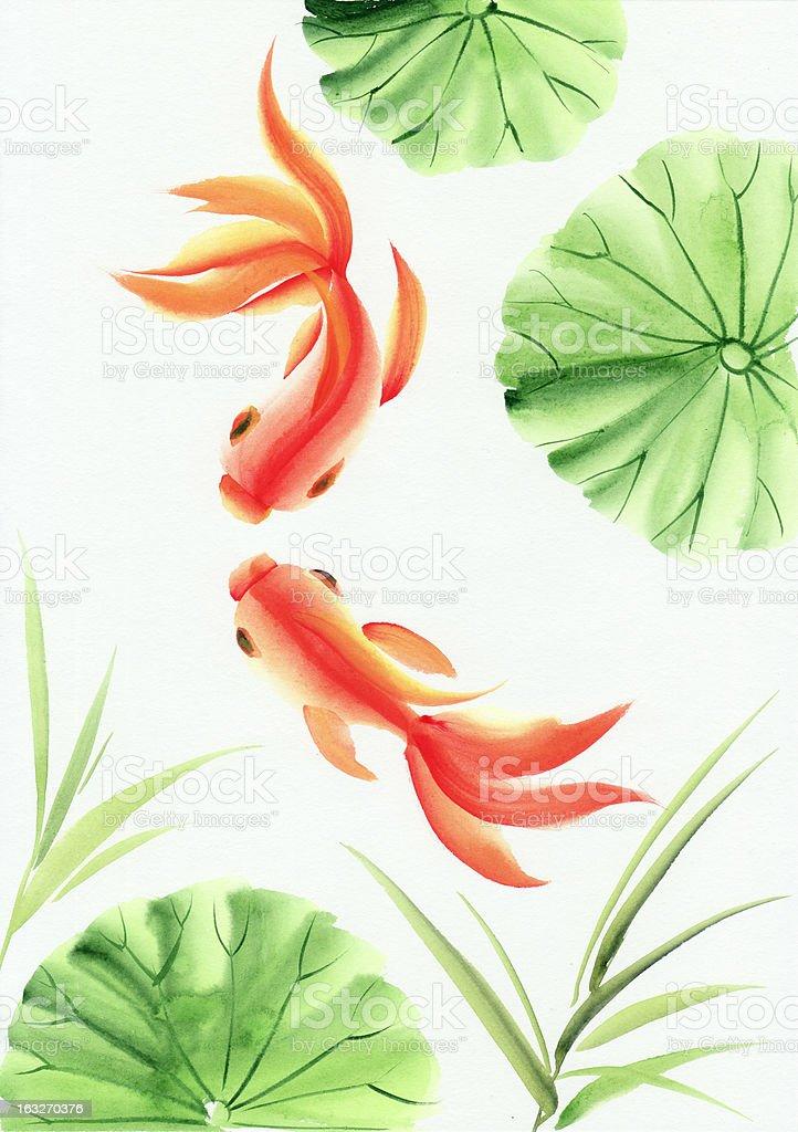 Goldfish among green lotus leaves vector art illustration