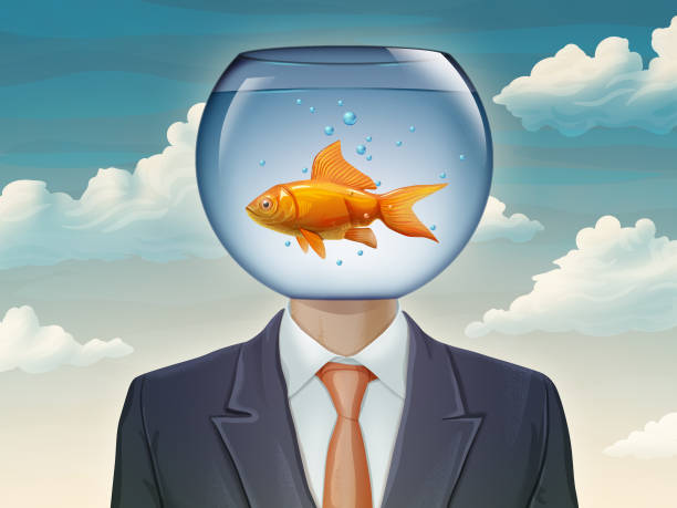 Goldfish and businessman Businessman with a fishtank as his head. Digital illustration. freshwater fish stock illustrations