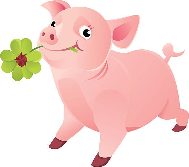 Cerdo con una buena suerte trébol de cuatro hojas - ilustración de arte vectorial
