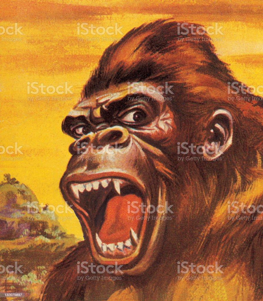 Gorilla Closeup royalty-free stock vector art