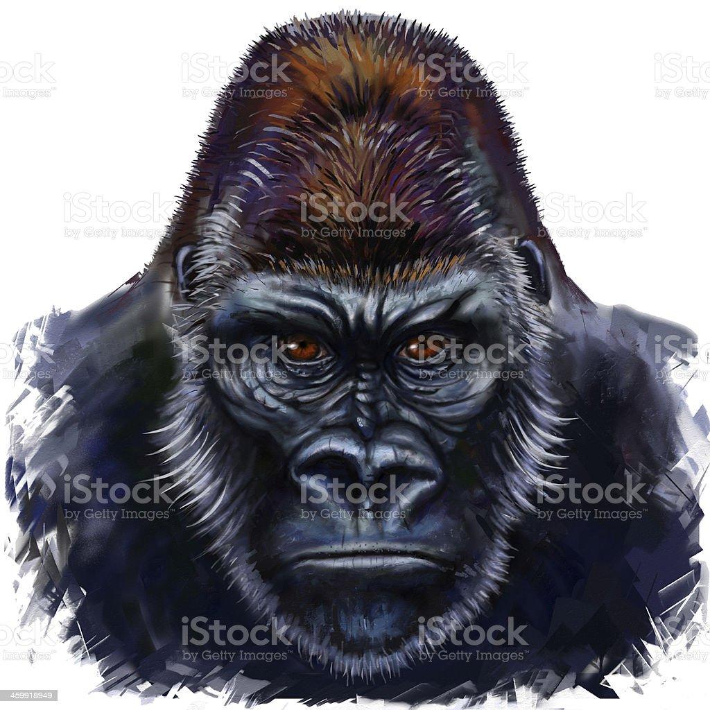 gorilla male vector art illustration