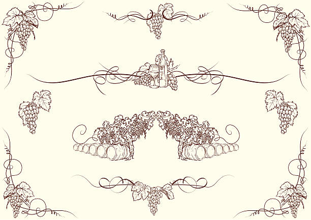 Traube Ornamenten – Vektorgrafik