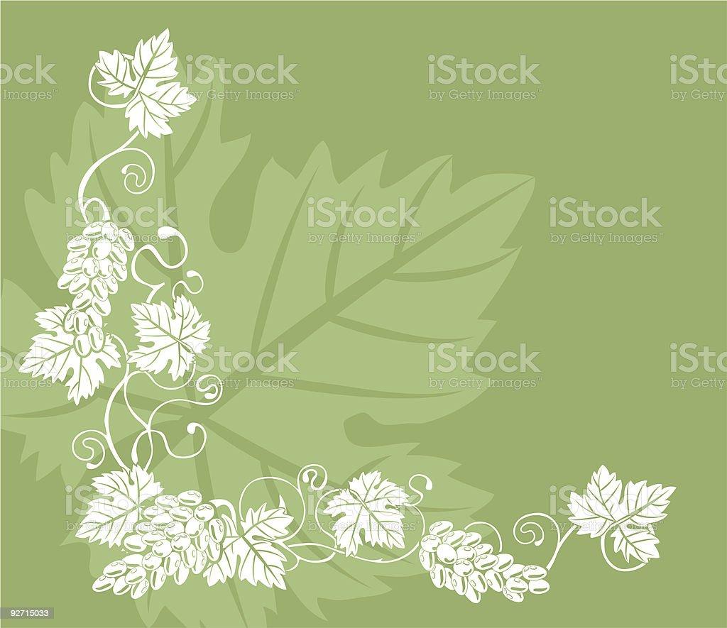 grape vine design element royalty-free stock vector art