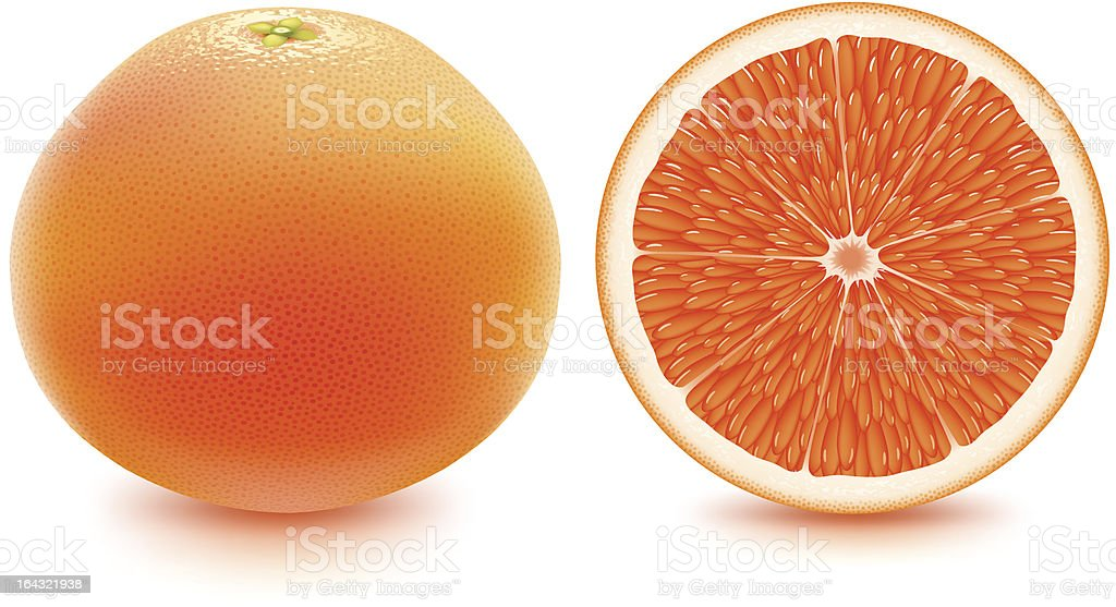 Grapefruit - fresh and juicy! vector art illustration