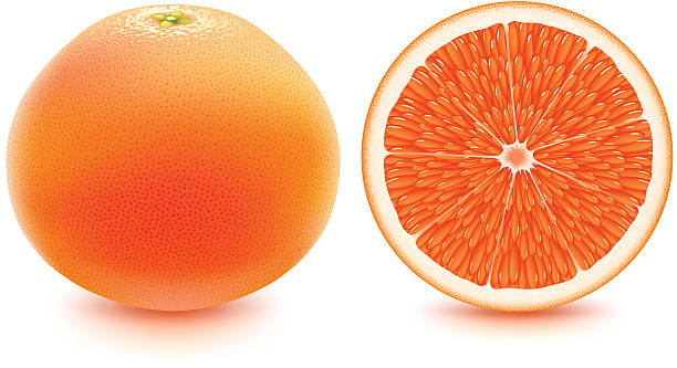 Grapefruit - fresh and juicy! vector art illustration