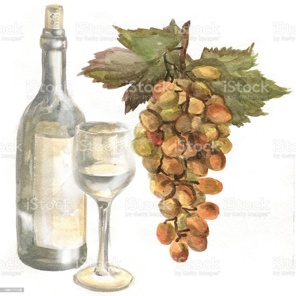 Grapes, wine bottle, white wine in a glass wine glass. Watercolor painting vector art illustration