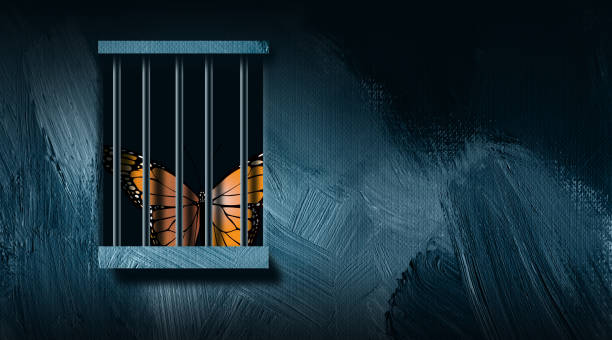 graphic butterfly and prison bars abstract background - wine stock illustrations
