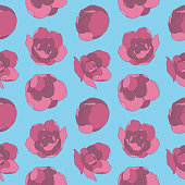 Graphic illustration floral pattern with pink roses flowers on blue background