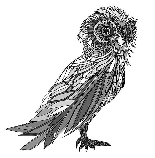 graphic illustration owl. hand drawn. - black and white owl stock illustrations, clip art, cartoons, & icons