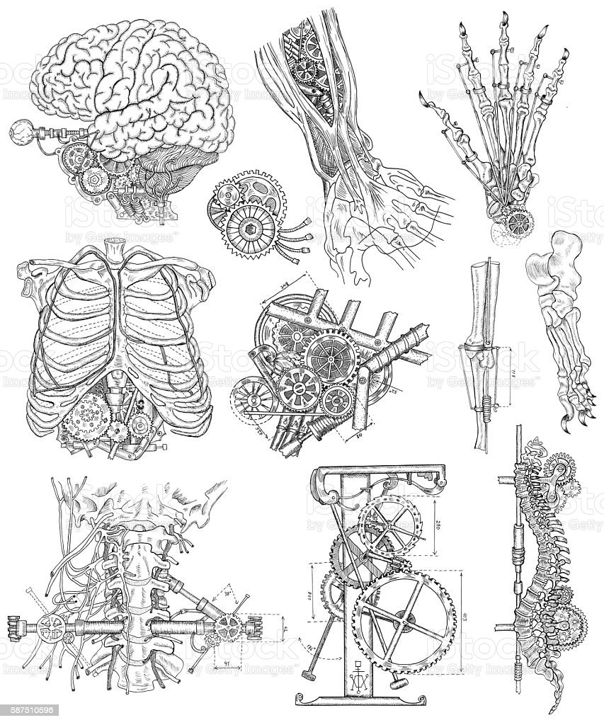 Graphic set with body parts, mechanical parts and devices vector art illustration