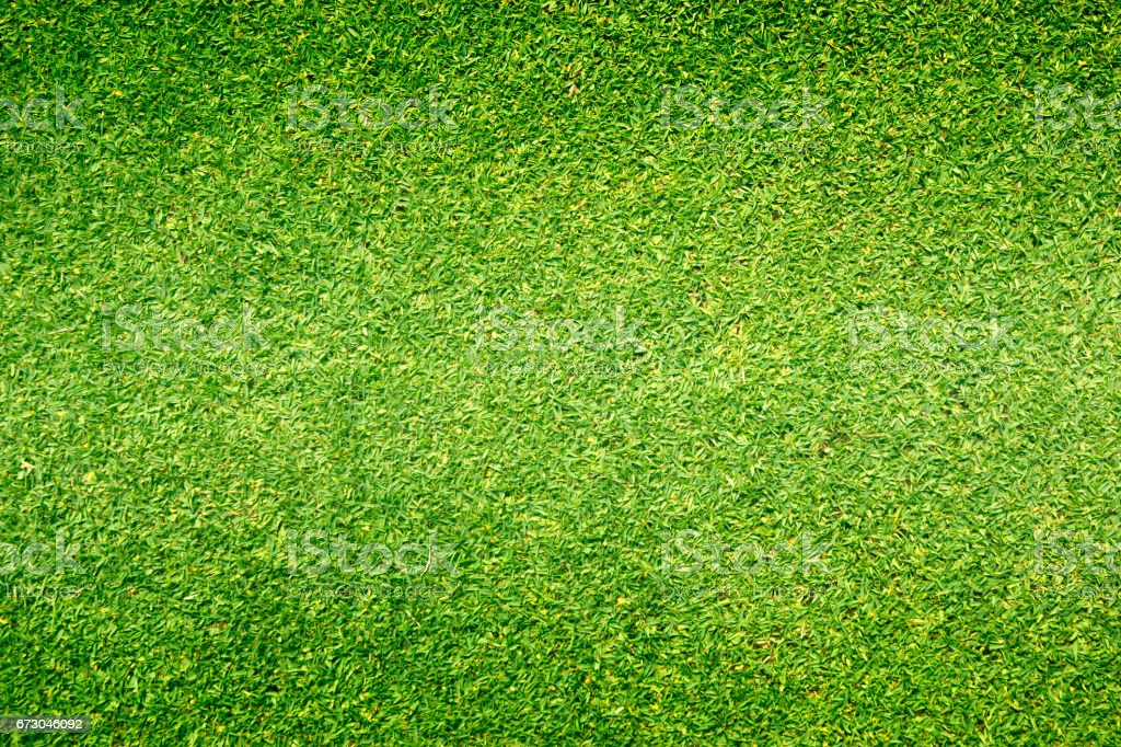 grass background Golf Courses green lawn vector art illustration