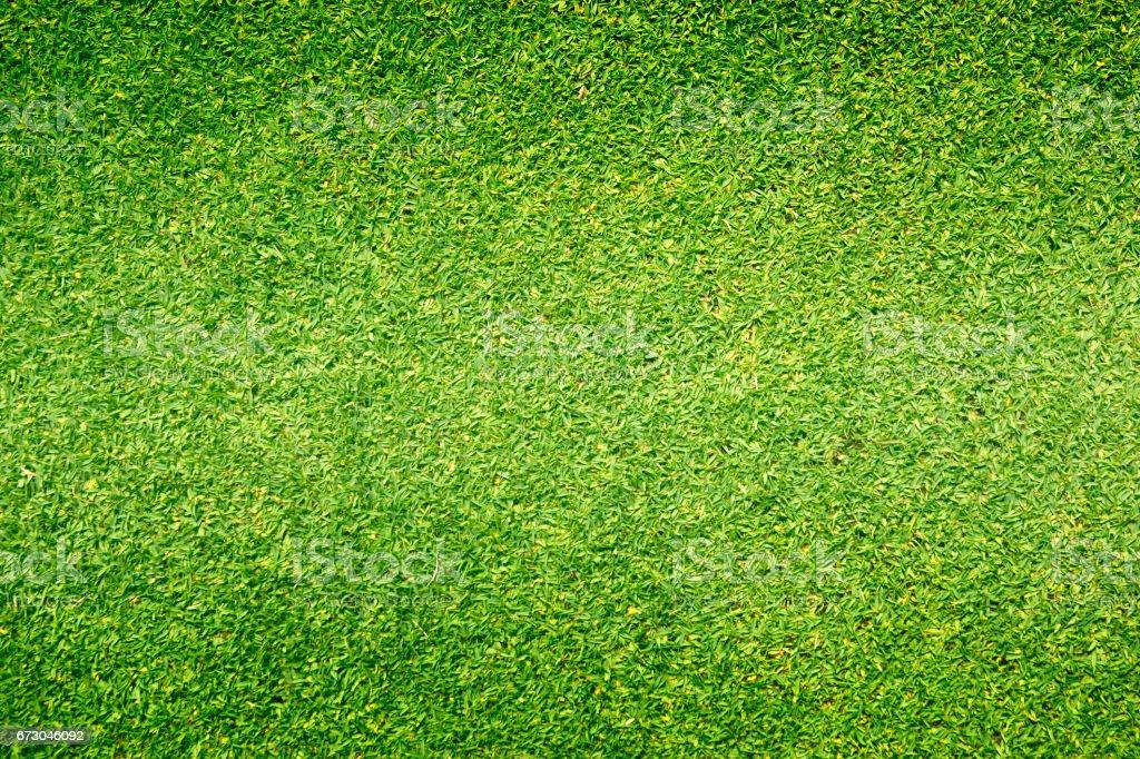 Fondo de hierba verde de golf césped - ilustración de arte vectorial