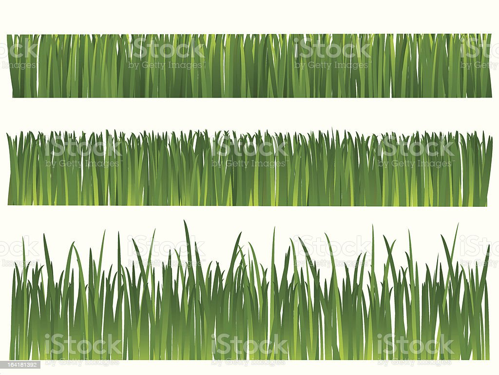 Grass royalty-free grass stock vector art & more images of agriculture