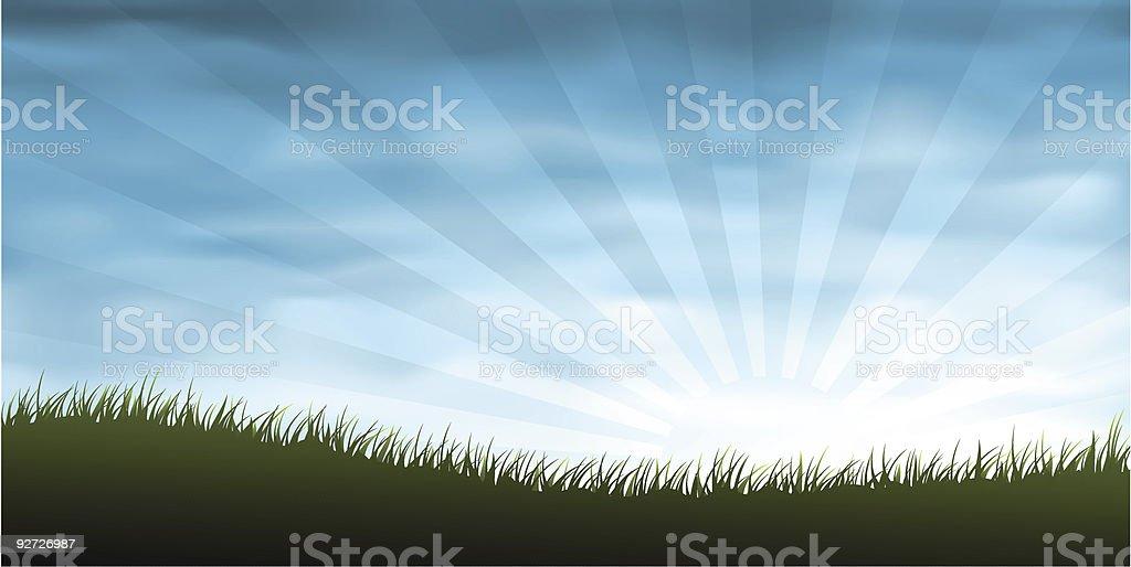 Grass panorama vector art illustration