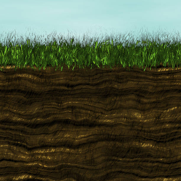 Grass with soil generated texture vector art illustration
