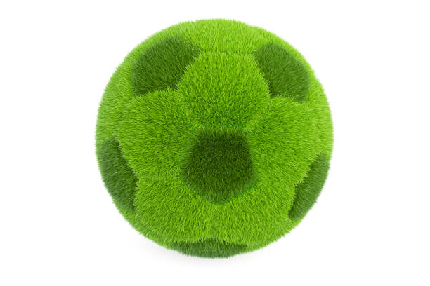 Grassy soccer ball, 3D rendering isolated on white background vector art illustration