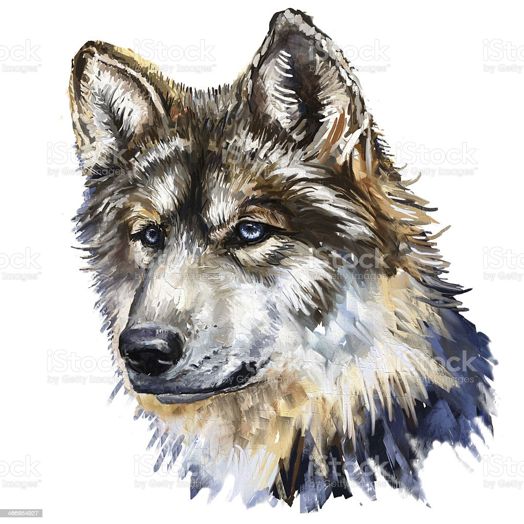 gray wolf head royalty-free stock vector art