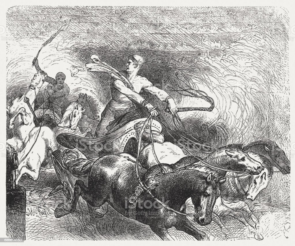 Greek chariot racing in antiquity, wood engraving, published in 1880 royalty-free greek chariot racing in antiquity wood engraving published in 1880 stock vector art & more images of adult