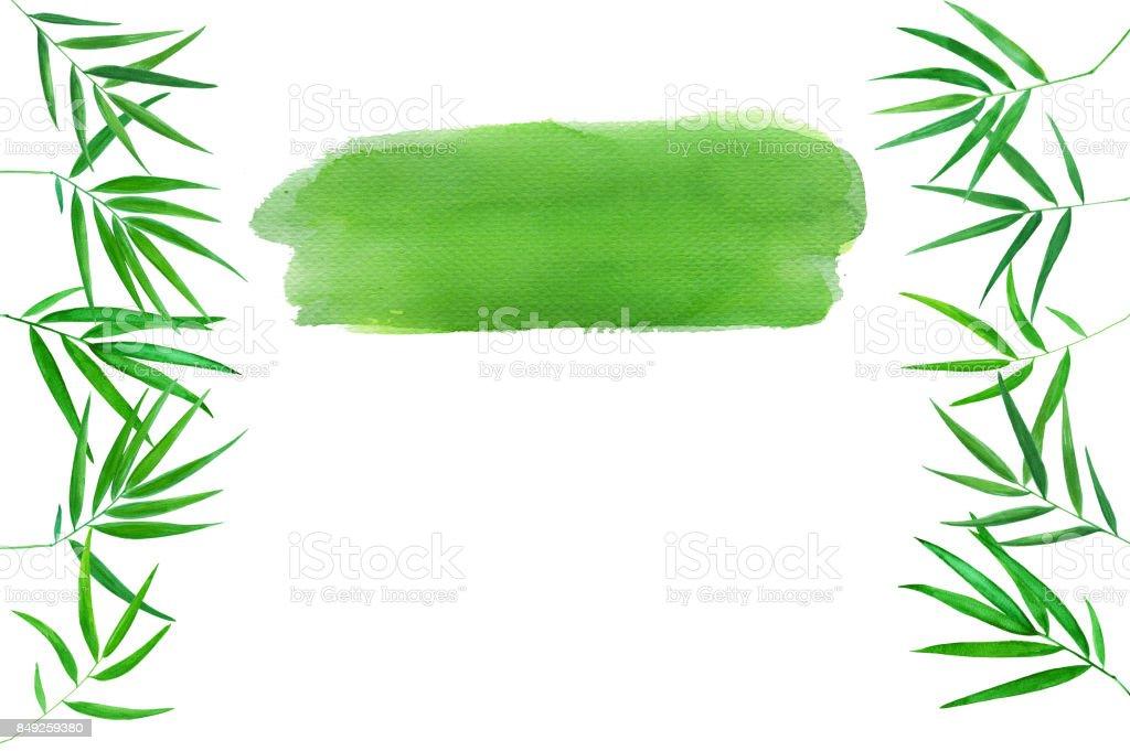 Gruner Bambus Blatter Aquarell Abbildung Handgezeichneten Zen